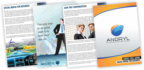 ANDRYL eBook Social Media for Business